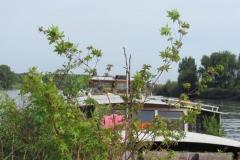 12-augustus-2012-0168-Rupelmonde